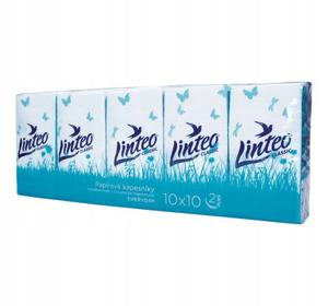 Obrazek Chusteczki higieniczne 2 warstwowe 100 sztuk 10 opakowań po 10 szt.