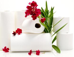 Obrazek dla kategorii Ręczniki papierowe